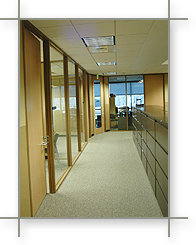 Commerical Full Glass Window Wall in Austin Texas