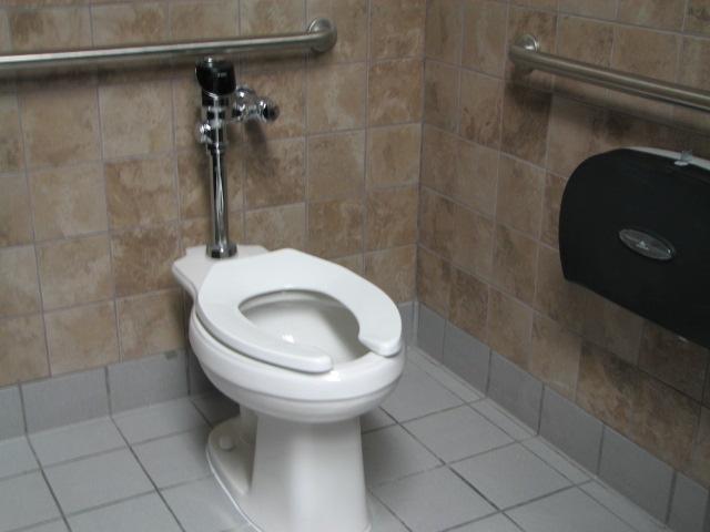Grab bars and ADA compliant toilet accessories