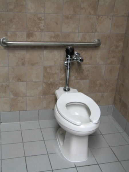 Self flushing ADA toilet with adequate grab bars