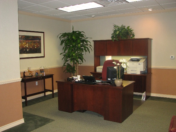 Office Finish Outs