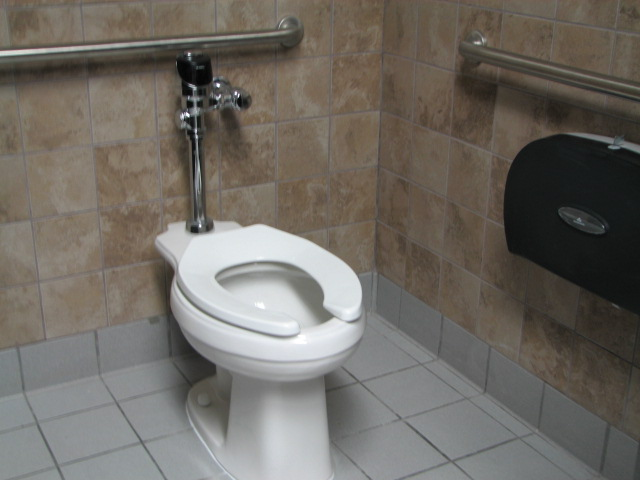 ADA compatible grab bars and automatic flushing fixtures