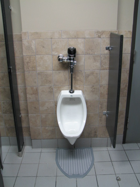 Auto flushing ADA height urinals with privacy screen