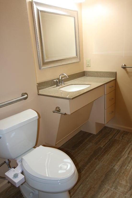 Handicap Bathroom Vanity In Austin